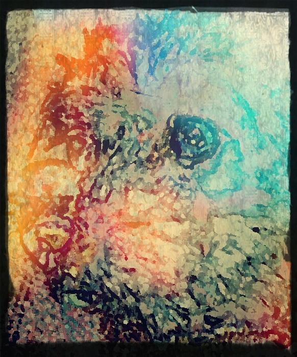 Pastel Pooch Print by Tina  Vaughn