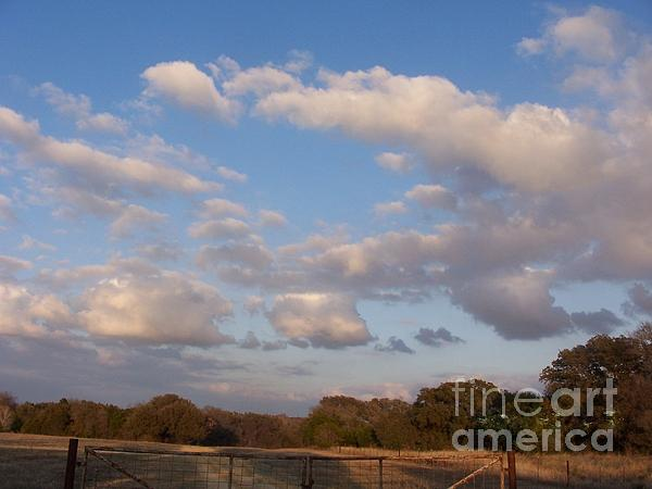 Pasture Clouds Print by Susan Williams