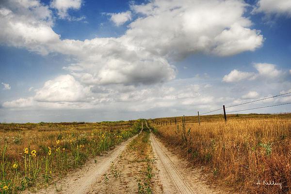 Andrea Kelley - Pasture Road