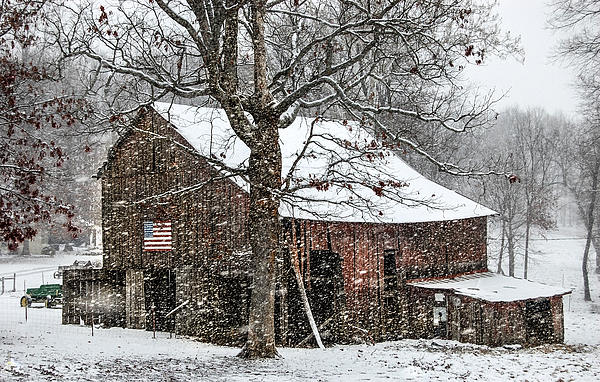Patriotic Tobacco Barn Print by Debbie Green