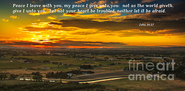 Peace Print by Robert Bales
