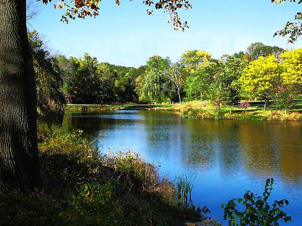 Susan Savad - Peaceful Lake
