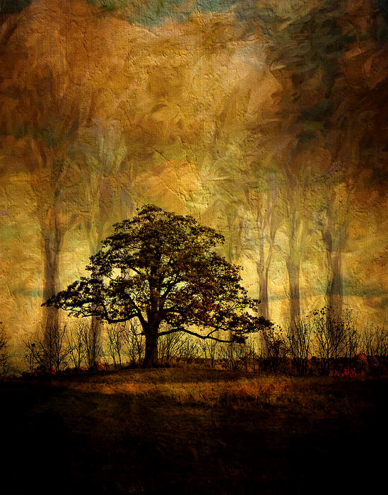 Pamela Phelps - Peaceful Tree