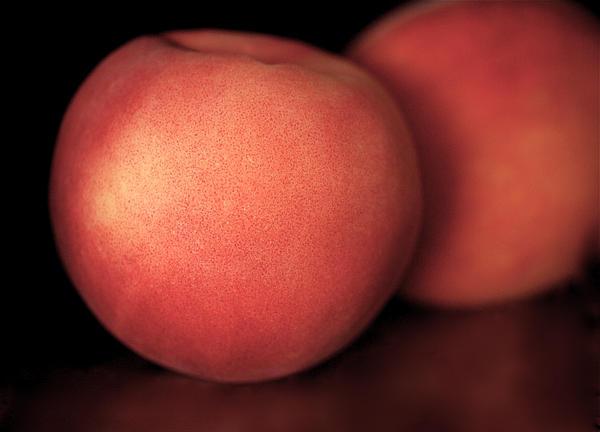 Peach Print by Rona Black
