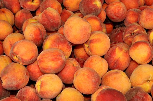 Peaches Print by Diane Lent