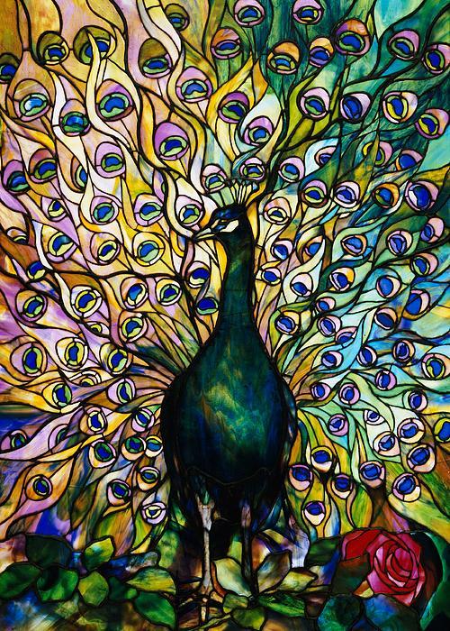 Peacock Print by American School