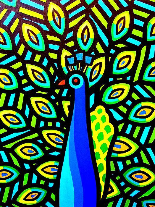 Peacock Iv Print by John  Nolan