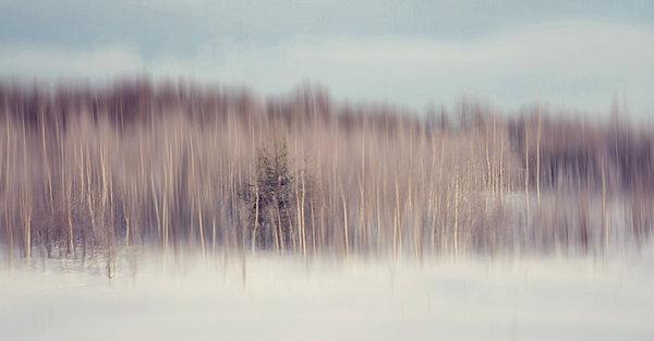 Pearly Winter. Impressionism Print by Jenny Rainbow