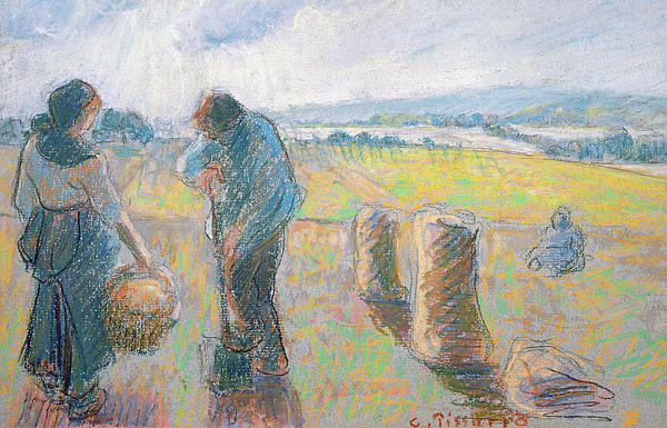Peasants In The Fields Print by Camille Pissarro