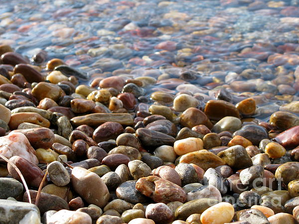 Pebbles On The Shore Print by Leone Lund