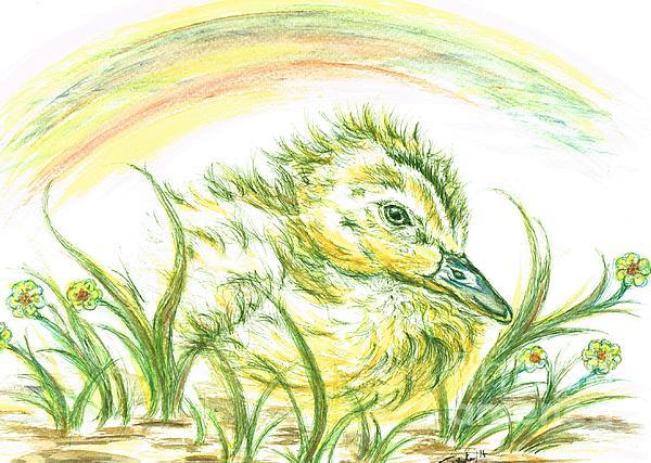 Teresa White - Pekin Duckling