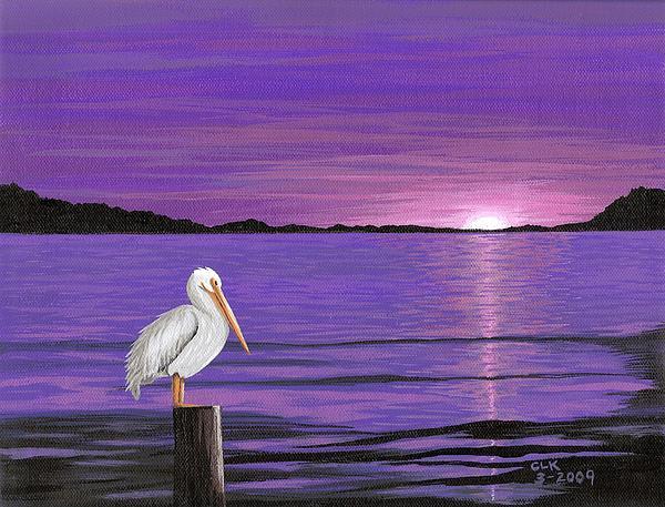Pelican In Purple Sunset Print by Cyndi Kingsley