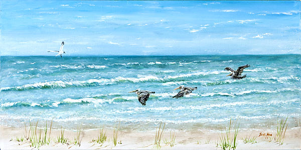 Pelicans On Crescent Beach Print by Bruce Alan