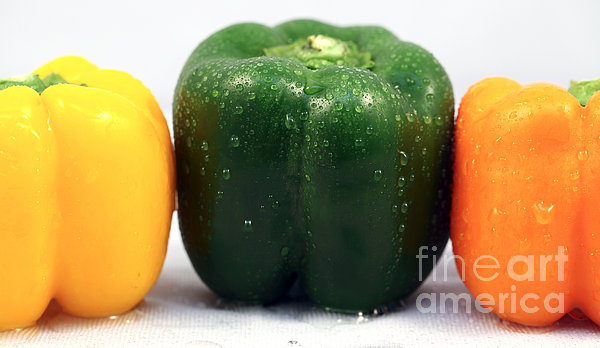 Pepper Colors Print by John Rizzuto