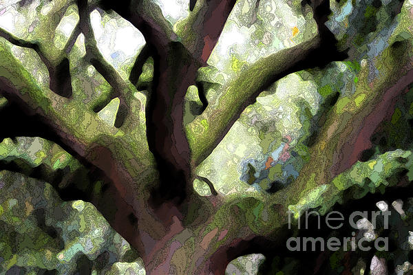 Perfect Climbing Tree  Print by Carol Groenen