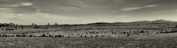 Picketts Charge From Seminary Ridge In Black And White Print by Joshua House