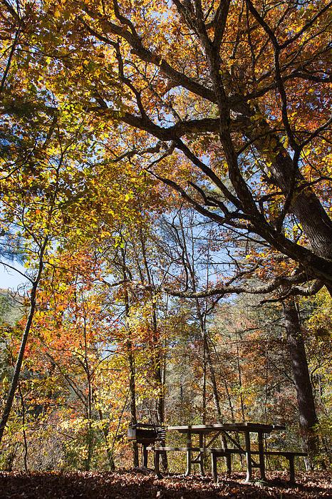 John Bailey - Picnic in Autumn