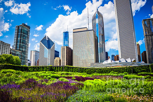 Picture Of Lurie Garden Flowers With Chicago Skyline Print by Paul Velgos