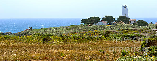 Piedras Blancas Lighthouse Near San Simeon And Cambria Along Hwy 1 In California Print by Artist and Photographer Laura Wrede