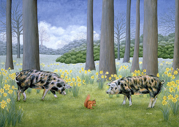 Piggy In The Middle Print by Ditz