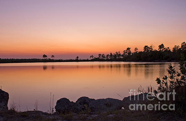 Anne Rodkin - Pine Glades Lake At Sunset #2