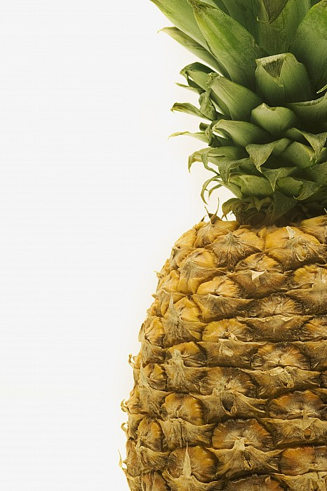 Pineapple Print by Darren Greenwood