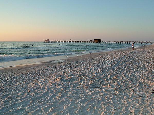 Susan Wyman - Pink Florida Sands