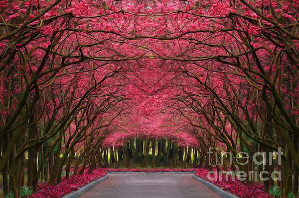 Pink Forest Way Print by Martin Dzurjanik