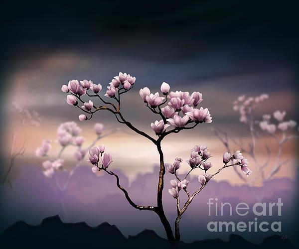 Bedros Awak - Pink Magnolia - Dark Version