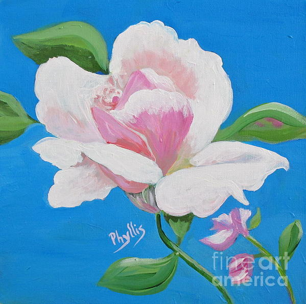 Phyllis Kaltenbach - Pink Rose in Paint