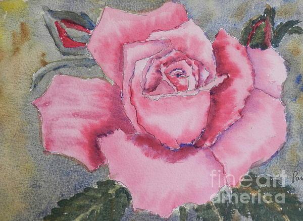 Pamela  Meredith - Pink Rose