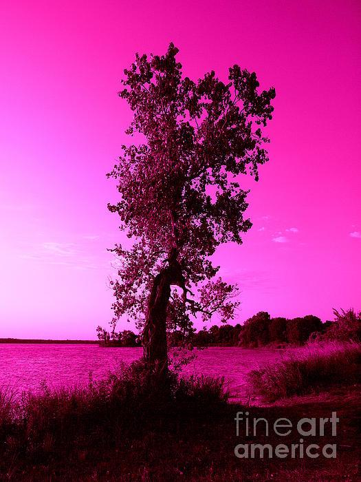 Pink Sky Print by Mickey Harkins