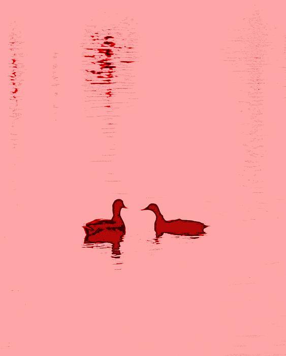 Pink Water Print by Hilde Widerberg