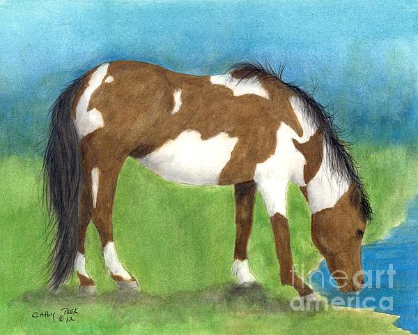 Pinto Mustang Horse Mare Farm Ranch Animal Art Print by Cathy Peek