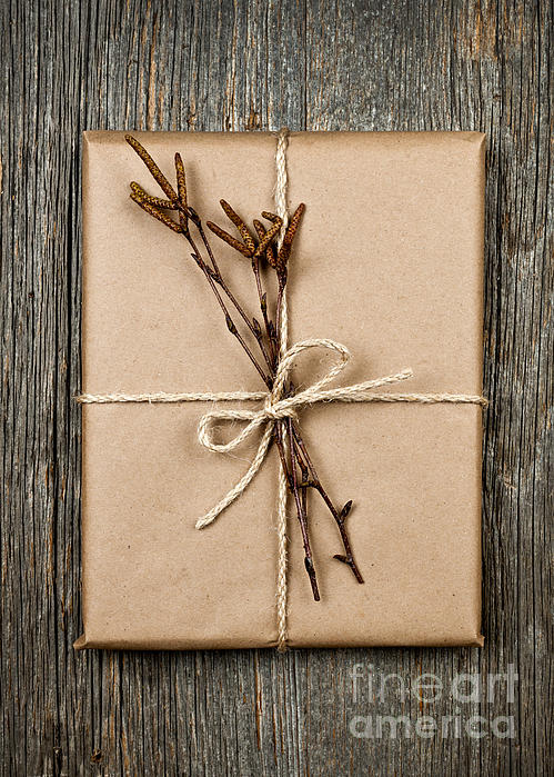 Plain Gift With Natural Decorations Print by Elena Elisseeva