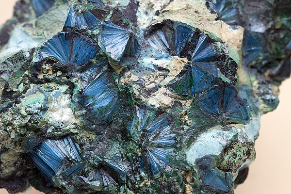 Plancheite Mineral Print by Science Photo Library