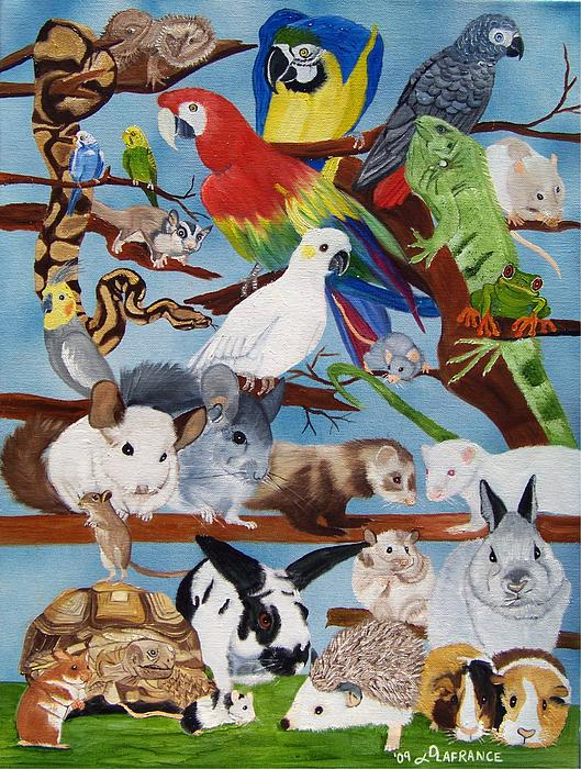 Pocket Pets Print by Debbie LaFrance