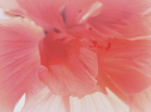 The Art of Marilyn Ridoutt-Greene - Poem of the Soul