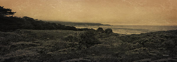 Point Lobos - An Antique Take Print by Angela A Stanton