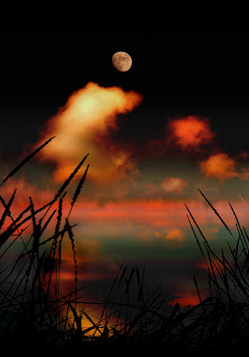 Pointing At The Moon Print by Mal Bray