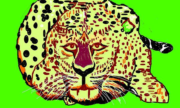 Anand Swaroop Manchiraju - Pondering Leopard