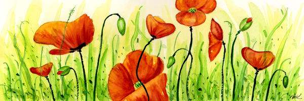 Poppy Field Print by Annie Troe