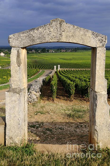 Portal  Of Vineyard.burgundy. France Print by Bernard Jaubert