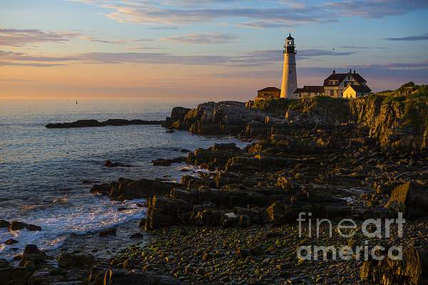 Portland Head Lighthouse At Dawn Print by Diane Diederich