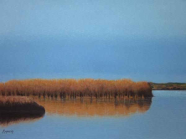 Powder Blue Marsh Print by Harvey Rogosin