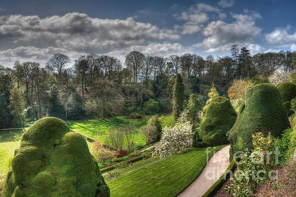 Mickeys Photography - Powis Castle Garden
