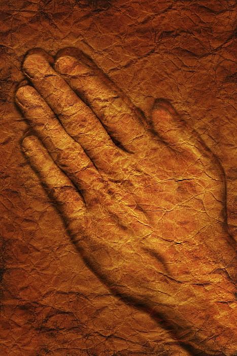 Praying Hands Print by Don Hammond