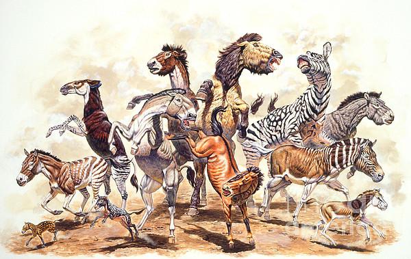 Prehistoric Horses Print by Mark Hallett Paleoart