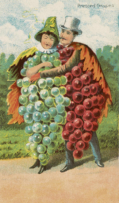 Pressed Grapes Print by Aged Pixel