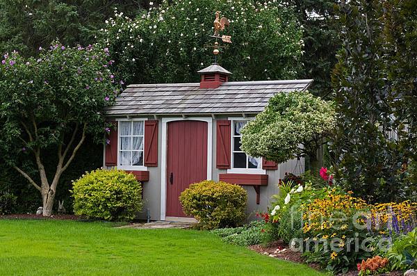 Pretty Garden Shed by Barbara McMahon